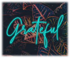 Grateful neon sign in front of plants